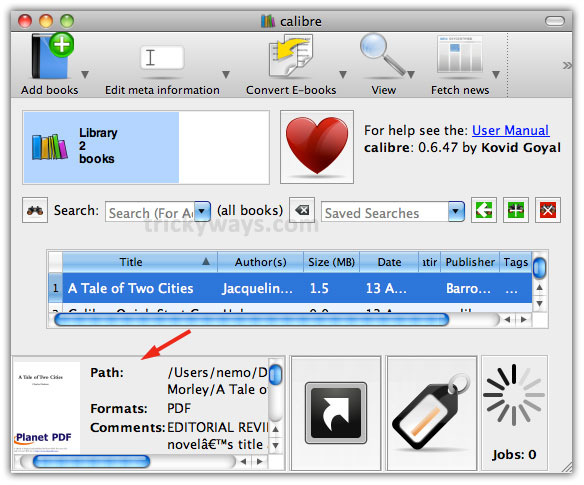 How to Convert PDF to ePub Format | iPad