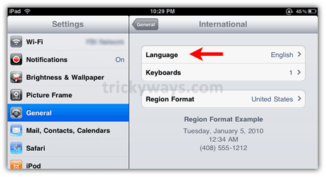 iPad language option