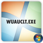 wuauclt.exe