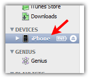 iPhone device in iTunes