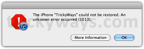 iTunes 1013 error