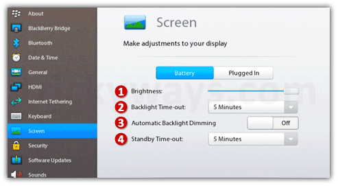 Playbook Screen settings