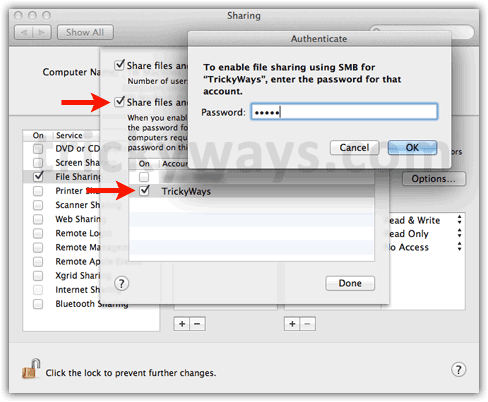 Sharing options OS X Lion