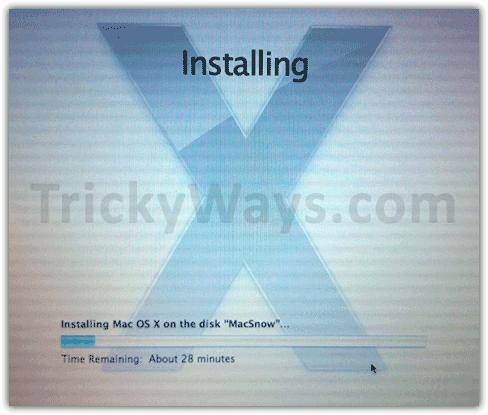 Installing Mac OS X