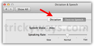 dictation-on-mountain-lion
