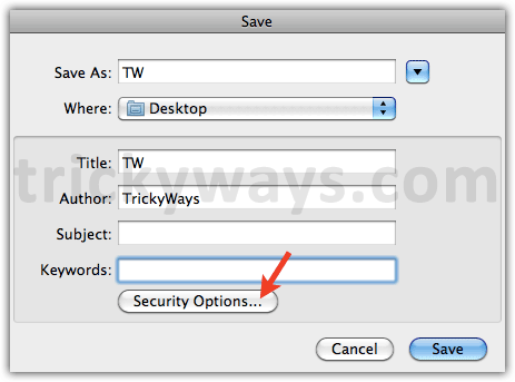pdf-security-options