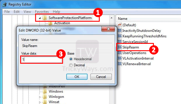 change-windows-registry-skip-rearm-value