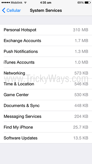 cellular data used by iphone system services