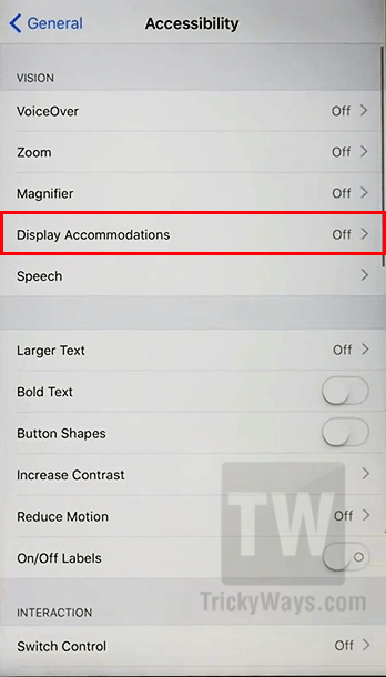 ios 11 display accommodations