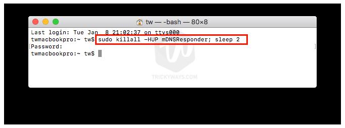 clear dns cache mac command