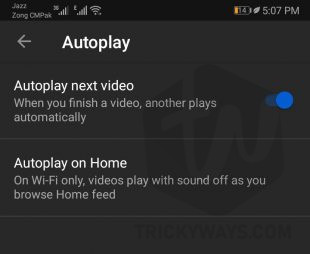 YouTube App auto play next video