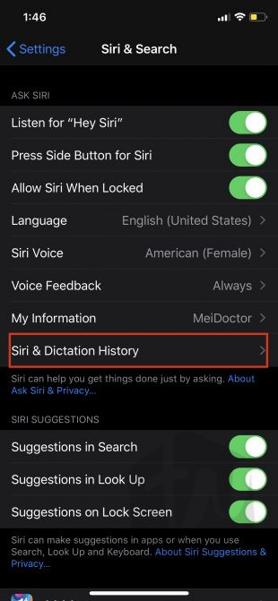 siri & dictation history