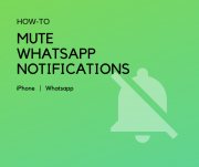 mute whatsapp notifications